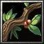 Ironwood Branch